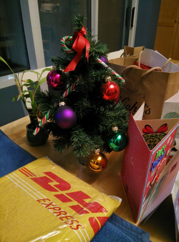 DHL package under our Christmas tree.